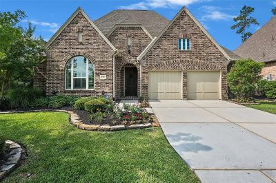 Tomball Single Family Home For Sale: 3 Corbel Point Way