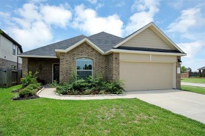 Richmond Single Family Home For Sale: 9702 Rich Mountain Drive