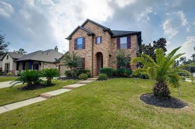 Single Family Home For Sale: 27519 Colin Springs Lane