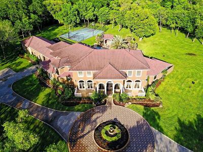 Missouri City Single Family Home For Sale: 7851 Spirit Hollow