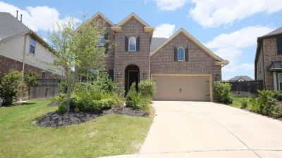 Fulshear Single Family Home For Sale: 3531 Rapid Creek Lane