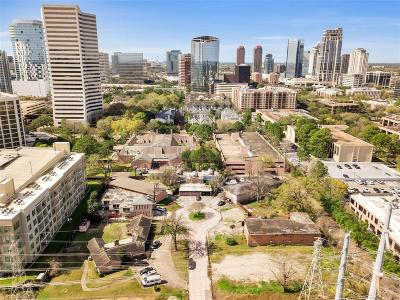 Houston Multi Family Home For Sale: 4 Briar Dale Court #9