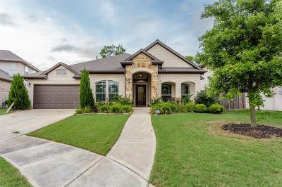 Sugar Land Single Family Home For Sale: 6634 Brady Springs Lane