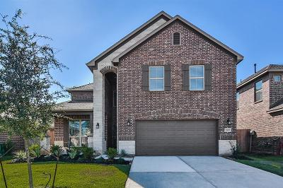 Montgomery County Single Family Home For Sale: 23490 Banks Mill Drive