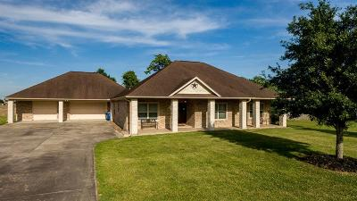 Dickinson Single Family Home For Sale: 3207 Tallow Forest