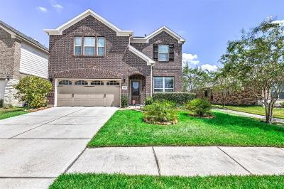 Houston Single Family Home For Sale: 16622 Lake Aquilla Lane