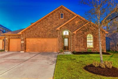 Rosharon Single Family Home For Sale: 9611 Clear Diamond Drive
