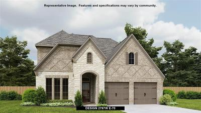 Pearland Single Family Home For Sale: 3707 Timber Grove Court