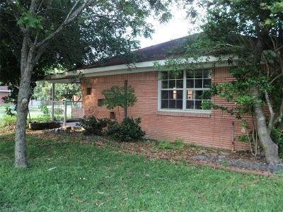 Houston Single Family Home For Sale: 2119 Theta Street