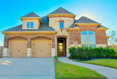 Pearland Single Family Home For Sale: 11608 Vista Park Court