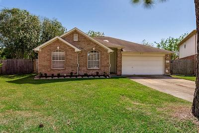 Katy Single Family Home For Sale: 3026 Rainmont Lane