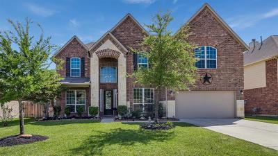Tomball Single Family Home For Sale: 17310 Stamford Oaks Drive