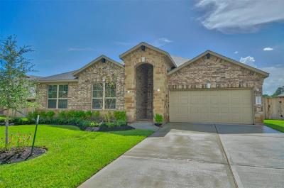 Tomball Single Family Home For Sale: 12615 Fort Isabella Drive