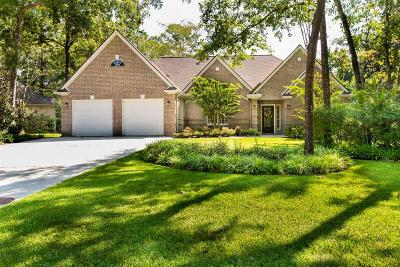 Conroe Single Family Home For Sale: 122 S South Park