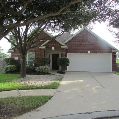 Tomball Single Family Home For Sale: 19334 Gallatin Lane
