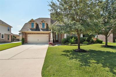 Spring Single Family Home For Sale: 6711 Brock Meadow Drive