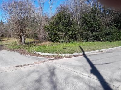 Tomball Residential Lots & Land For Sale: 0000 Mechanic Street