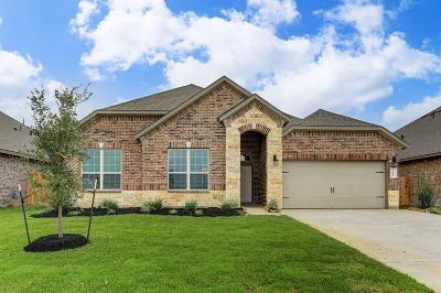 League City Single Family Home For Sale: 6411 Firewood Drive