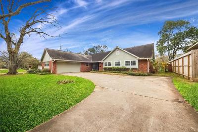 Houston Single Family Home For Sale: 4931 Glenmeadow Drive