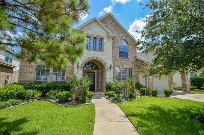 Pearland Rental For Rent: 13109 Broad Bay Lane