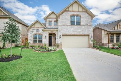 Tomball Single Family Home For Sale: 21730 Rose Maris Lane