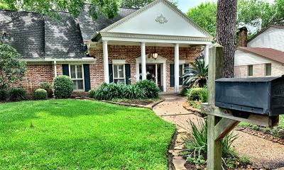 Houston Single Family Home For Sale: 827 Thornvine Lane
