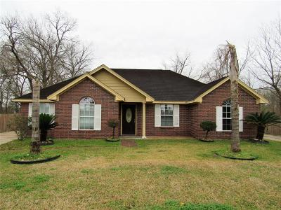 Houston Single Family Home For Sale: 1133 W Little York Road