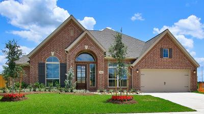 Tomball Single Family Home For Sale: 21406 Martin Tea Trail