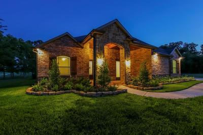 Fulshear Single Family Home For Sale: 32819 Whistler Court