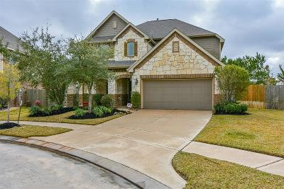 Cypress Single Family Home For Sale: 14602 W Red Bayberry Court
