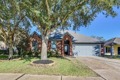 Houston Single Family Home For Sale: 18910 Appletree Ridge Road