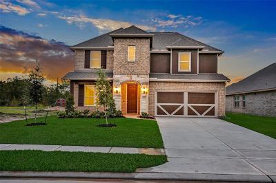 League City Single Family Home For Sale: 1224 Bowen Drive