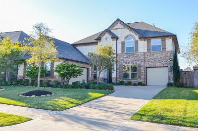 Katy Single Family Home For Sale: 9918 Hutton Park Drive