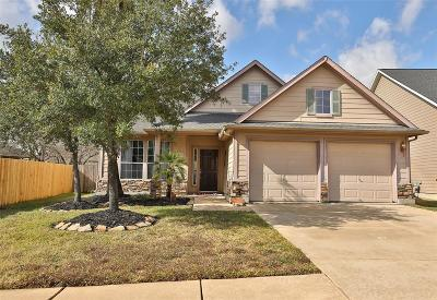 Tomball Single Family Home For Sale: 18911 Magnolia Arbor Lane
