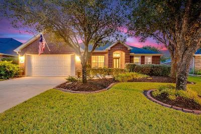 Katy Single Family Home For Sale: 28006 Rusty Hawthorne Drive