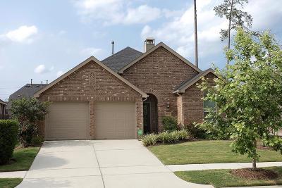 Conroe Single Family Home For Sale: 8138 Black Percher Street
