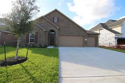 League City TX Single Family Home For Sale: $324,082