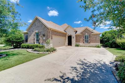 Tomball Single Family Home For Sale: 58 Witherbee Place