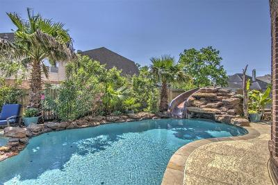 Missouri City Single Family Home For Sale: 3022 Wood Stork Lane