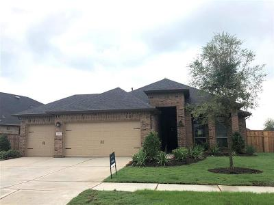 Fulshear Single Family Home For Sale: 29042 Turning Springs Lane