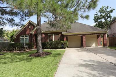 League City Single Family Home For Sale: 2374 Autumn Mist Lane
