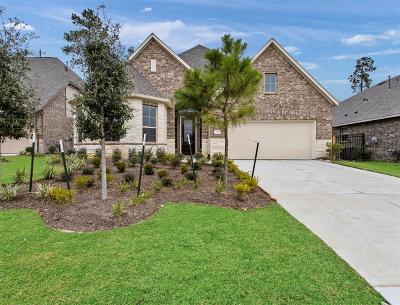 Single Family Home For Sale: 27111 Spanish Wind Court
