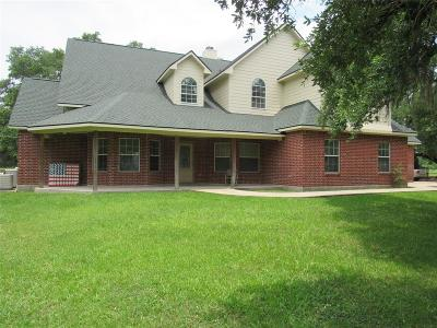 Liberty Single Family Home For Sale: 894 County Road 1180