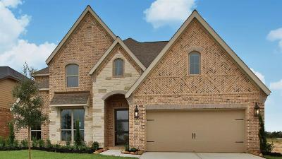 Tomball Single Family Home For Sale: 20123 Desert Foal Drive