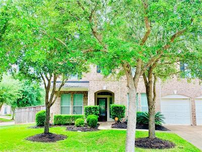 Missouri City Single Family Home For Sale: 3503 Cedar Hill Court