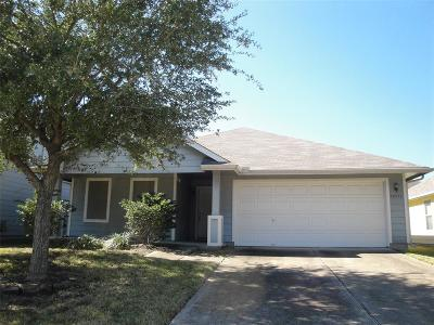 Tomball Single Family Home For Sale: 19811 Twin Rivers Drive