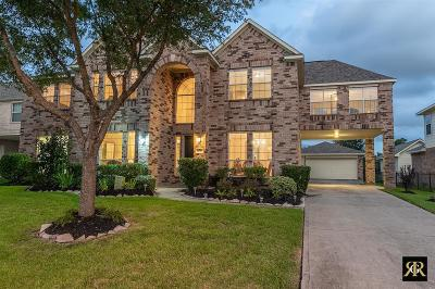 Tomball Single Family Home For Sale: 11010 S Country Club Green Drive