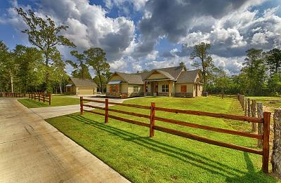 Conroe Farm & Ranch For Sale: 9400 Chasewood Boulevard