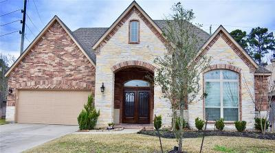 Tomball Single Family Home For Sale: 20807 Mystic Stone Drive