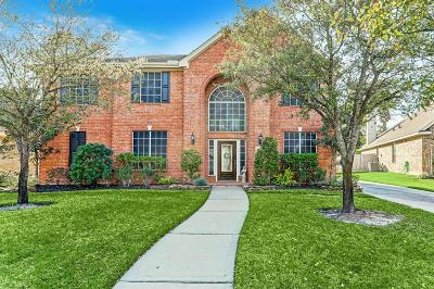 Tomball Single Family Home For Sale: 17719 Feathers Landing Drive